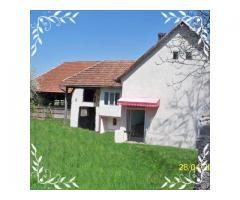Casa judet Arad localitate Brazii cu piscina langa rau