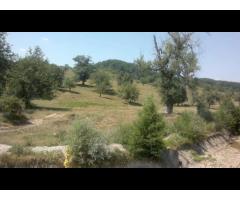 Vind teren pasune/extravilan 15 hectare in com. POIENARI SAT DRAGHICI