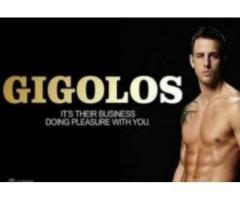 luxury Gigolo Travel - Vacante SPA&BALNEO